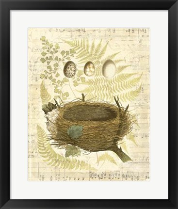 Framed Melodic Nest & Eggs II Print