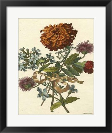 Framed Floral Posy III Print