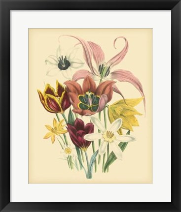 Framed Garden Bouquet IV Print