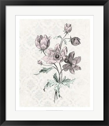 Framed Victorian Blooms II Print