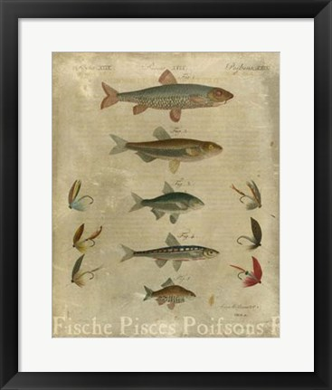 Framed Pisces Composition I Print