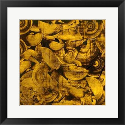 Framed Nautilus in Gold I Print