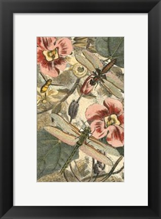 Framed Dancing Dragonfly II Print