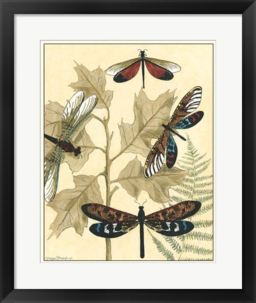 Framed Graphic Dragonflies in Nature I Print