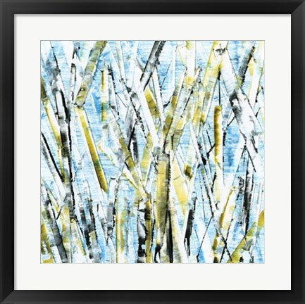Framed Birches IV Print