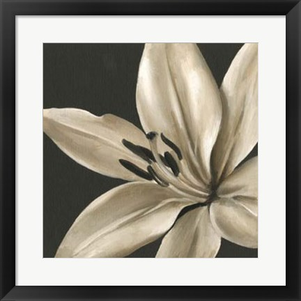 Framed Classical Blooms III Print