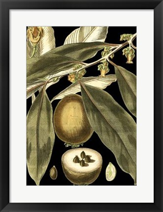 Framed Tranquil Tropical Leaves IV Print