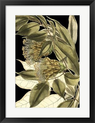 Framed Tranquil Tropical Leaves VI Print