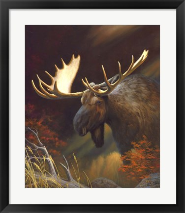 Framed Moose Portrait Print