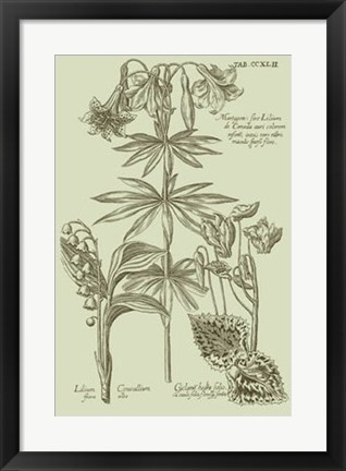 Framed Garden of Flora IV Print