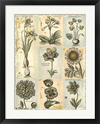 Framed Botanical Patchwork I Print