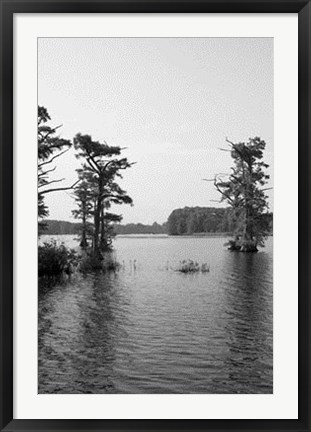 Framed Riverscape II Print