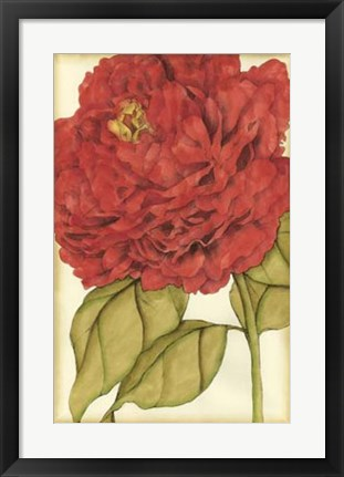 Framed Ruby Blooms II Print