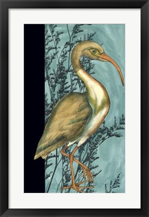 Framed Heron in the Grass I Print