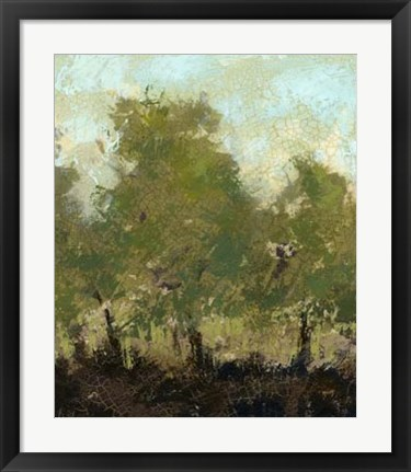 Framed Meadow Abstract I Print