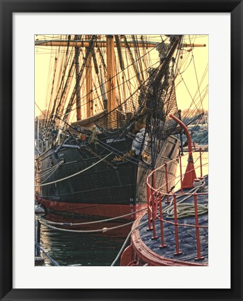 Framed Tall Ships in Darling Harbour Print