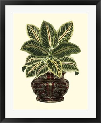 Framed Lush Foliage in Urn II Print
