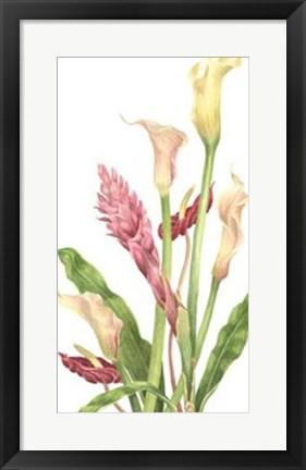 Framed Tropical Bouquet II Print