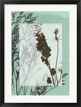 Framed Translucent Wildflowers II Print