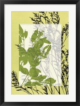 Framed Translucent Wildflowers III Print