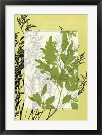 Framed Translucent Wildflowers IV Print
