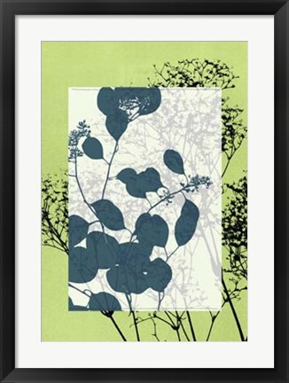 Framed Translucent Wildflowers VII Print