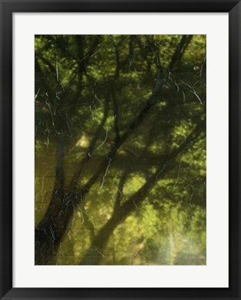 Framed Shaded Reflection II Print