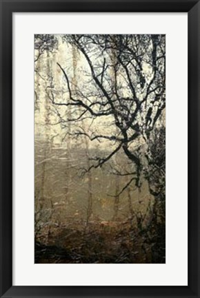 Framed Wooded Solace III Print