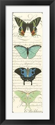 Framed Butterfly Prose Panel II Print