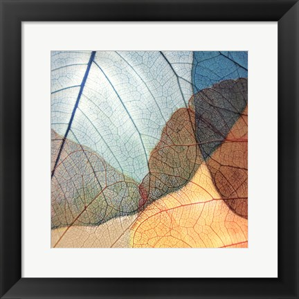 Framed Blue and Orange Leaves II Print