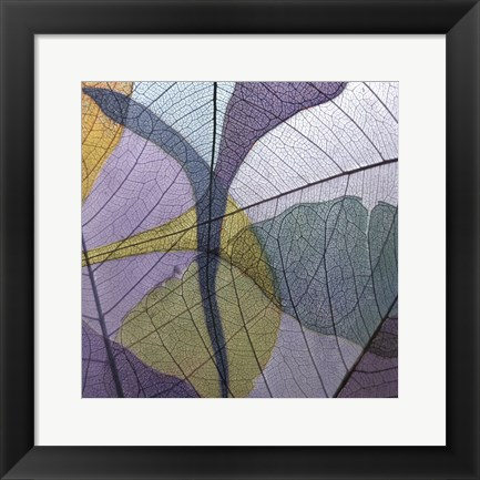 Framed Purple and Grey Leaves I Print