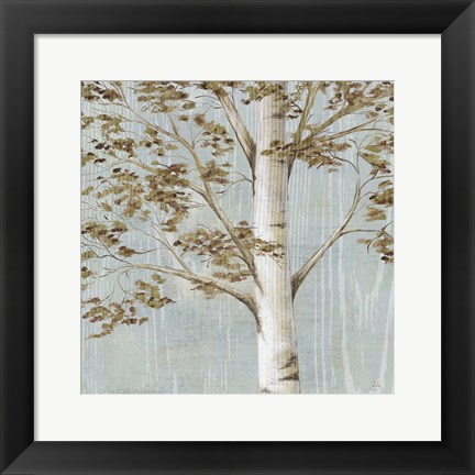 Framed Birch Study I Print