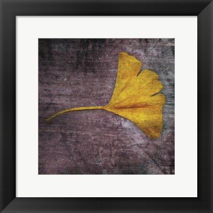 Framed Gingko 4 Print