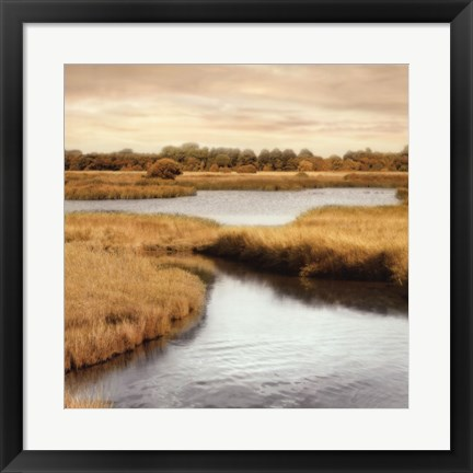 Framed Morning Calm II Print