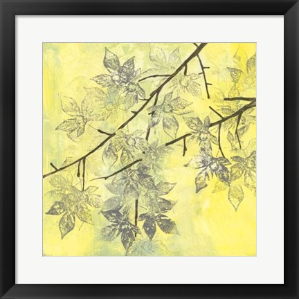 Framed Fluttering Maple II Print