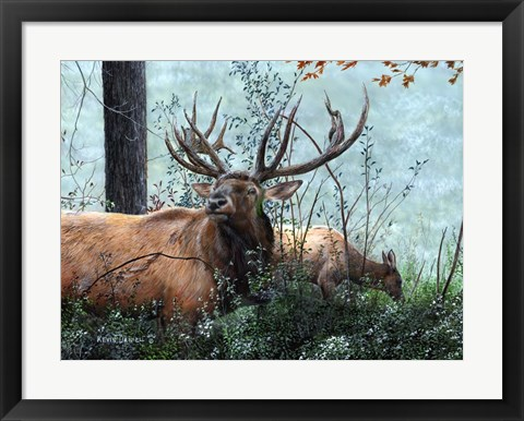 Framed Elk Foraging Print