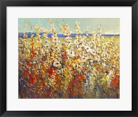Framed Field of Spring Flowers II Print