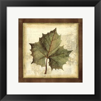 Framed Rustic Leaves I - No Crackle Print