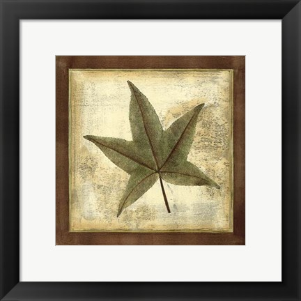 Framed Rustic Leaves II - No Crackle Print