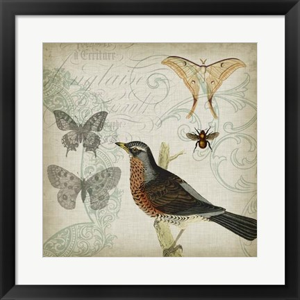 Framed Cartouche & Wings II Print