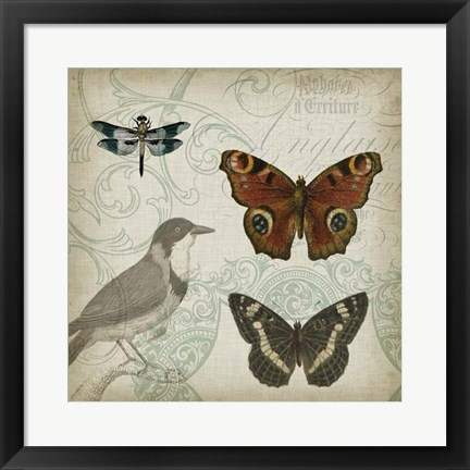 Framed Cartouche & Wings IV Print