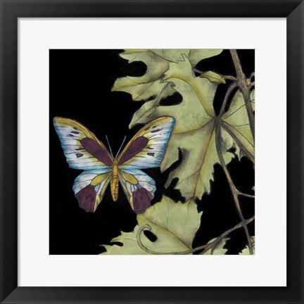 Framed Butterfly on Vine I Print