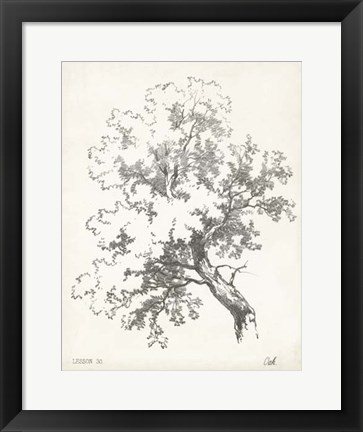 Framed Oak Tree Study Print