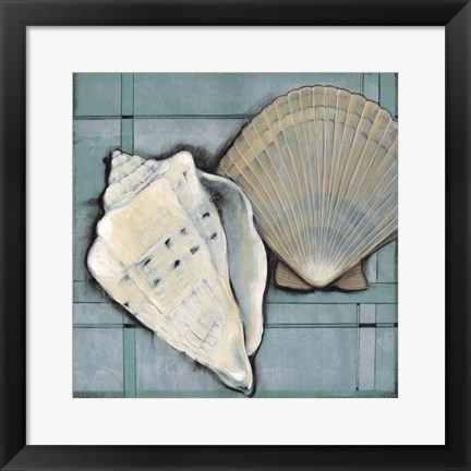 Framed Seashell Sketch II Print