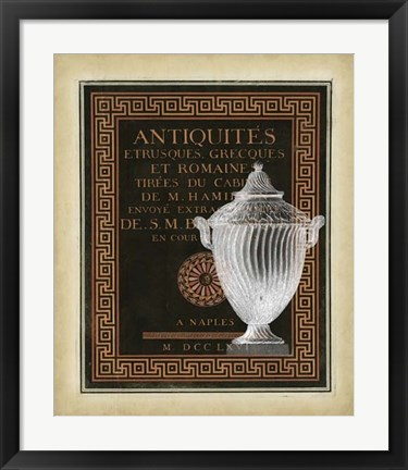 Framed Antiquities Collection III Print