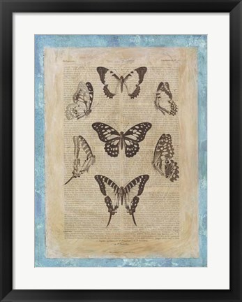 Framed Bookplate Butterflies III Print