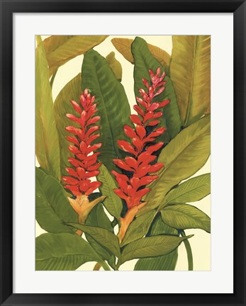 Framed Tropical Red Ginger Print