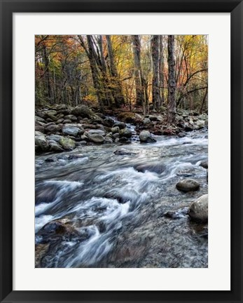 Framed Porter's Creek I Print