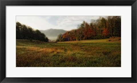 Framed Warm Morning Light Print
