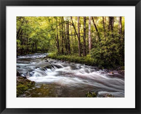 Framed Sunlight on Jake's Creek II Print